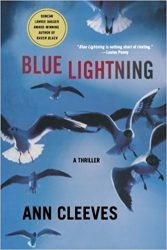 Shetland Books in Order: How to read Ann Cleeves series